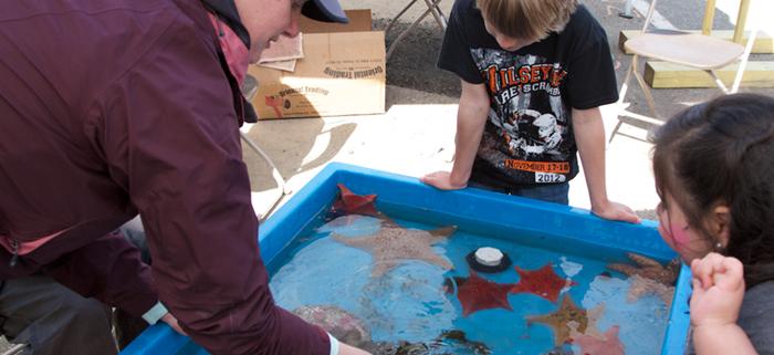 Kids Hands-on Tide Pool